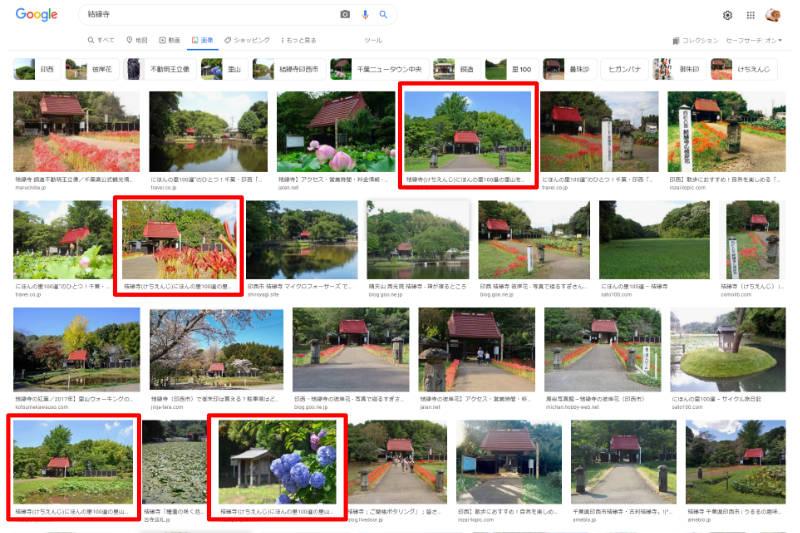 Google画像検索の画面